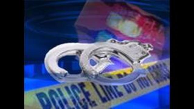 Police: Logan mom falsely claimed sons were sick
