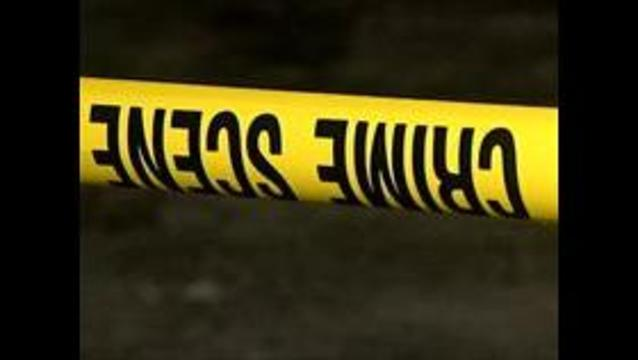 Officials investigate horse shooting in Tooele County
