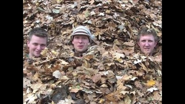 'World's Biggest Pile of Leaves' video goes viral