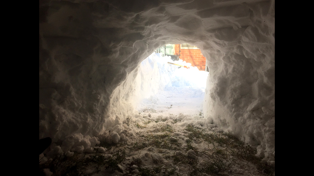 Child Building Snow Fort in Spanish Fork Roadway Narrowly Missed By Plow Driver