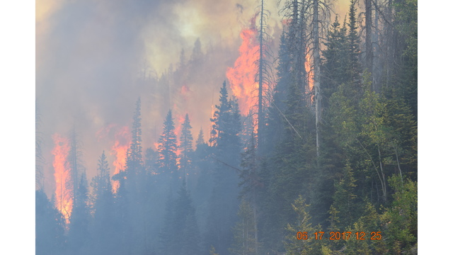Brian Head Fire courtesy Mike Berg Parowan PD_1497884631759.jpg