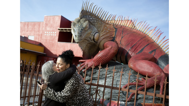 Giant red iguana unveiled in Salt Lake City